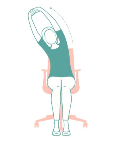 espina, posiciones de yoga